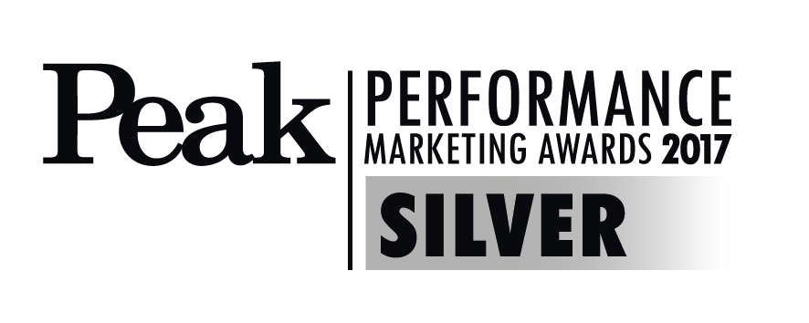 Performance peak logo