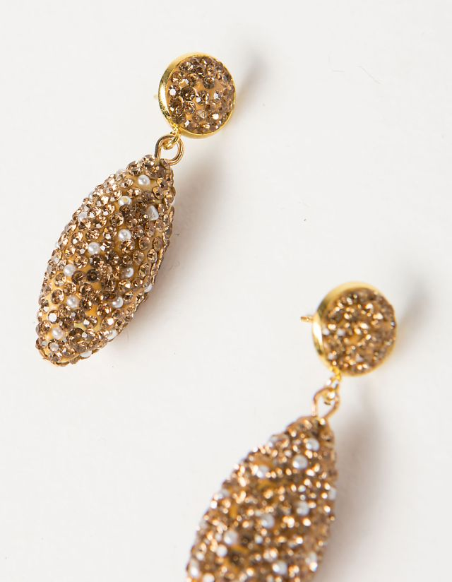 BEJEWLED EARRINGS WITH STONES